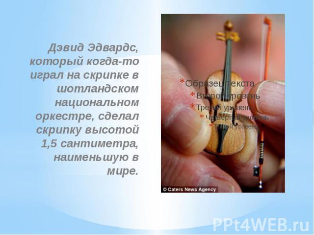 Дэвид Эдвардс, который когда-то играл на скрипке в шотландском национальном оркестре, сделал скрипку высотой 1,5 сантиметра, наименьшую в мире.