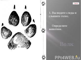 Главная 1. Вы видите следы и слышите голос. Определите животное.