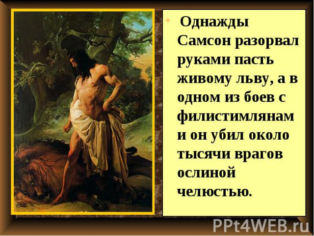 Однажды Самсон разорвал руками пасть живому льву, а в одном из боев с филистимлянами он убил около тысячи врагов ослиной челюстью. Однажды Самсон разорвал руками пасть живому льву, а в одном из боев с филистимлянами он убил около тысячи врагов ослин…