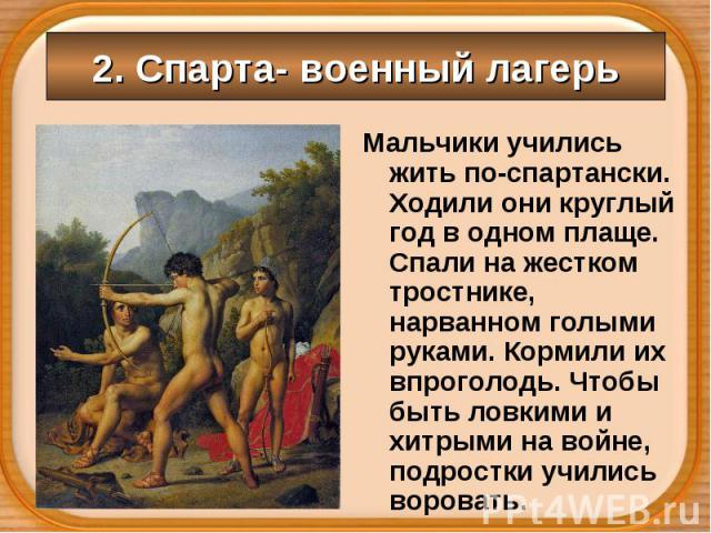 Мальчики учились жить по-спартански. Ходили они круглый год в одном плаще. Спали на жестком тростнике, нарванном голыми руками. Кормили их впроголодь. Чтобы быть ловкими и хитрыми на войне, подростки учились воровать. Мальчики учились жить по-спарта…