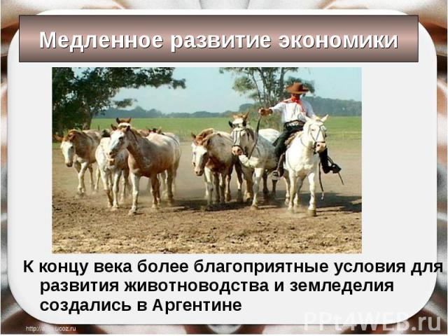 К концу века более благоприятные условия для развития животноводства и земледелия создались в Аргентине К концу века более благоприятные условия для развития животноводства и земледелия создались в Аргентине