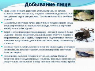 Рыбу можно поймать гарпуном, убить выстрелом из оружия, выловить сетями или рука