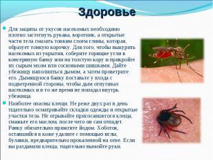 Для защиты от укусов насекомых необходимо плотно застегнуть рукава, воротник, а