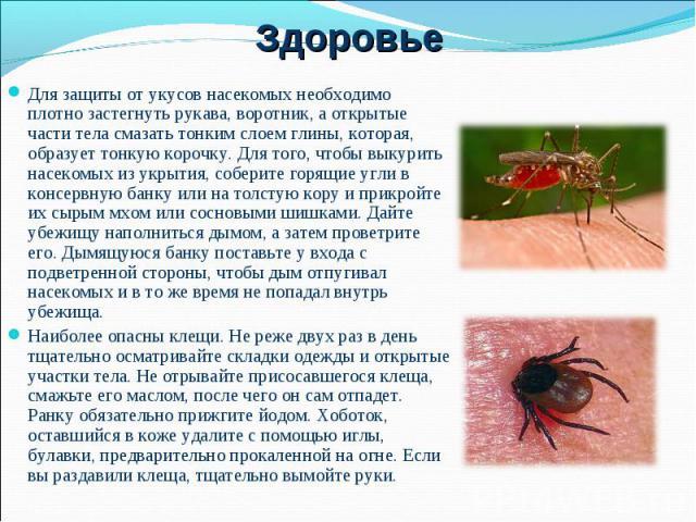 Для защиты от укусов насекомых необходимо плотно застегнуть рукава, воротник, а открытые части тела смазать тонким слоем глины, которая, образует тонкую корочку. Для того, чтобы выкурить насекомых из укрытия, соберите горящие угли в консервную банку…
