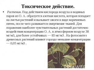 Токсическое действие. Растения.Под действием кислорода воздуха и вод
