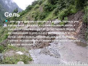 Сель - внезапно формирующийся в руслах горных рек временный грязевой и грязекаме