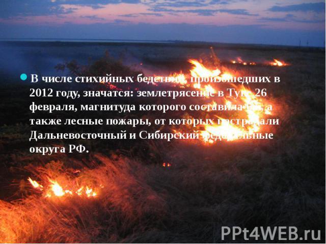В числе стихийных бедствий, произошедших в 2012 году, значатся: землетрясение в Туве 26 февраля, магнитуда которого составила 6,5, а также лесные пожары, от которых пострадали Дальневосточный и Сибирский федеральные округа РФ.