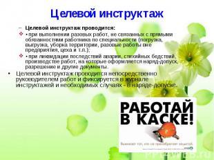 Целевой инструктаж Целевой инструктаж проводится: • при выполнении разовых работ