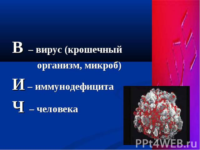 В – вирус (крошечный В – вирус (крошечный организм, микроб) И – иммунодефицита Ч – человека