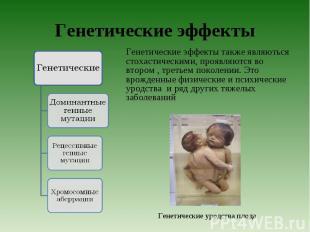 Генетические эффекты также являються стохастическими, проявляются во втором , тр