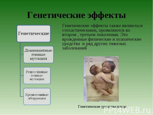 Генетические эффекты также являються стохастическими, проявляются во втором , третьем поколении. Это врожденные физические и психические уродства и ряд других тяжелых заболеваний Генетические эффекты также являються стохастическими, проявляются во в…