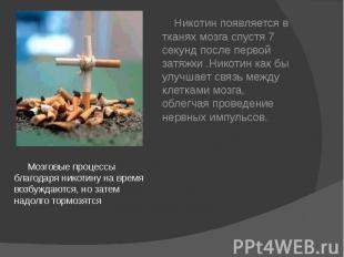 Мозговые процессы благодаря никотину на время возбуждаются, но затем надолго тор