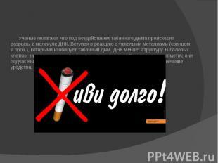 Ученые полагают, что под воздействием табачного дыма происходят разрывы в молеку