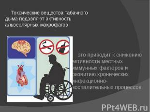 Токсические вещества табачного дыма подавляют активность альвеолярных макрофагов