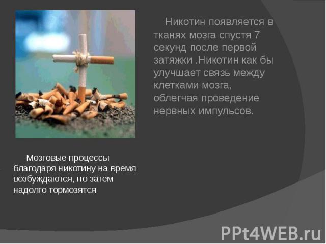 Мозговые процессы благодаря никотину на время возбуждаются, но затем надолго тормозятся Мозговые процессы благодаря никотину на время возбуждаются, но затем надолго тормозятся
