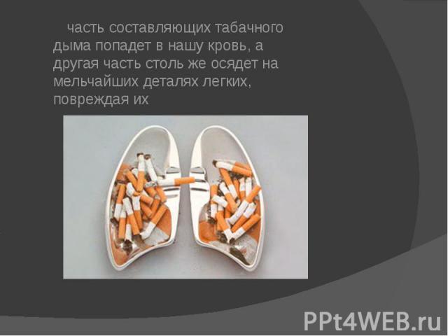 часть составляющих табачного дыма попадет в нашу кровь, а другая часть столь же осядет на мельчайших деталях легких, повреждая их часть составляющих табачного дыма попадет в нашу кровь, а другая часть столь же осядет на мельчайших деталях легких, по…