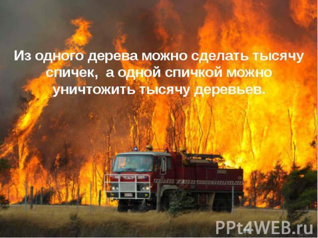 Из одного дерева можно сделать тысячу спичек, а одной спичкой можно уничтожить тысячу деревьев.