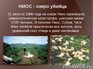 НИОС - озеро убийца 21 августа1986 года на озере Ниос произошла лимнологич