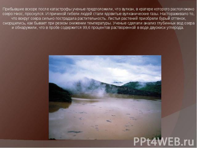 Прибывшие вскоре после катастрофы ученые предположили, что вулкан, в кратере которого расположено озеро Ниос, проснулся. И причиной гибели людей стали ядовитые вулканические газы. Настораживало то, что вокруг озера сильно пострадала растительность. …