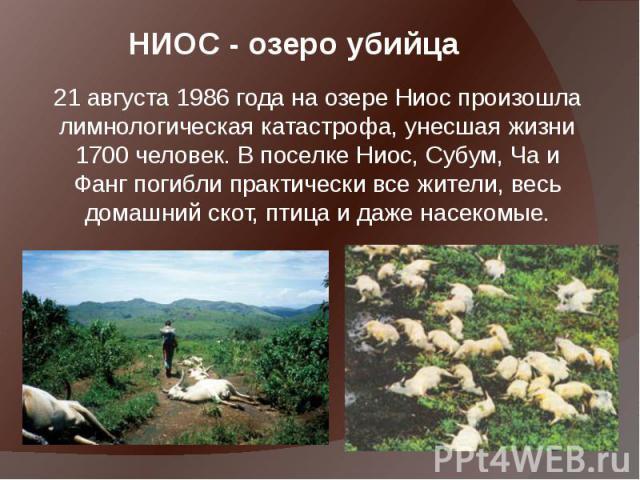 НИОС - озеро убийца 21 августа1986 года на озере Ниос произошла лимнологическая катастрофа, унесшая жизни 1700 человек. В поселке Ниос, Субум, Ча и Фанг погибли практически все жители, весь домашний скот, птица и даже насекомые.