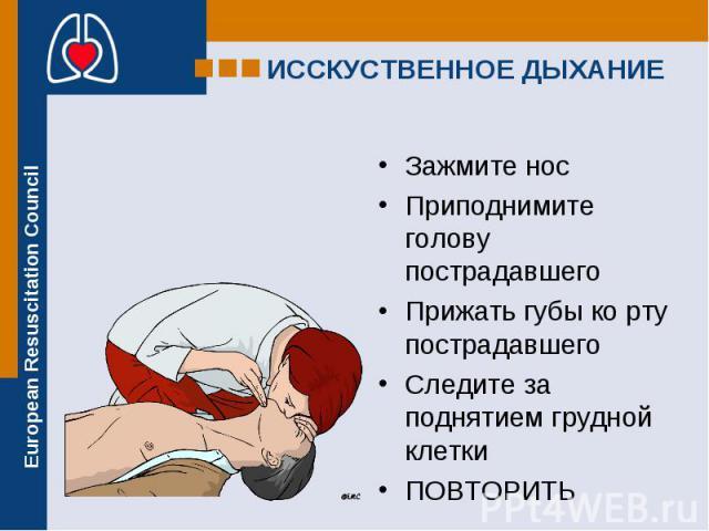 Зажмите нос Зажмите нос Приподнимите голову пострадавшего Прижать губы ко рту пострадавшего Следите за поднятием грудной клетки ПОВТОРИТЬ