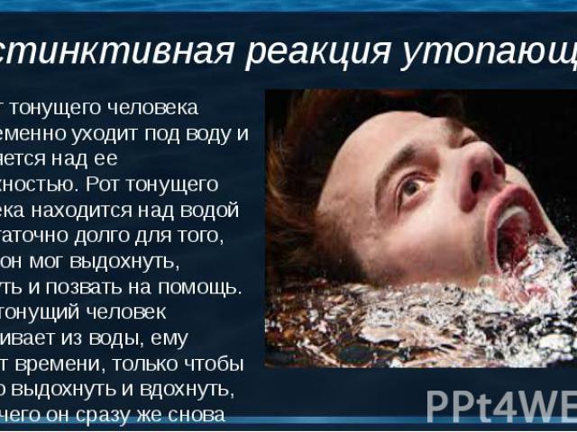 2. Рот тонущего человека попеременно уходит под воду и появляется над ее поверхностью. Рот тонущего человека находится над водой недостаточно долго для того, чтобы он мог выдохнуть, вдохнуть и позвать на помощь. Когда тонущий человек выныривает из в…
