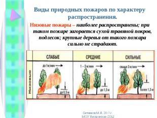 Виды природных пожаров по характеру распространения. Виды природных пожаров по х