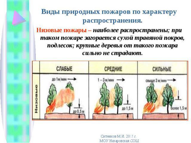 Виды природных пожаров по характеру распространения. Виды природных пожаров по характеру распространения. Низовые пожары – наиболее распространены; при таком пожаре загорается сухой травяной покров, подлесок; крупные деревья от такого пожара сильно …