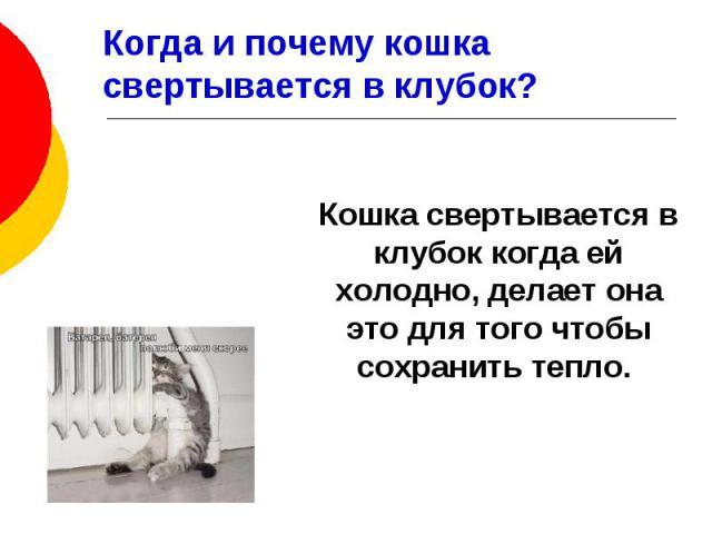 Когда и почему кошка свертывается в клубок? Кошка свертывается в клубок когда ей холодно, делает она это для того чтобы сохранить тепло.