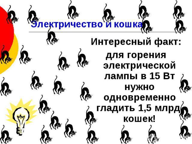 Электричество и кошка Интересный факт: для горения электрической лампы в 15 Вт нужно одновременно гладить 1,5 млрд. кошек!