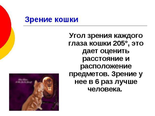 Зрение кошки Угол зрения каждого глаза кошки 205°, это дает оценить расстояние и расположение предметов. Зрение у нее в 6 раз лучше человека.