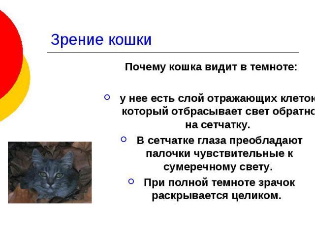 Зрение кошки Почему кошка видит в темноте: у нее есть слой отражающих клеток, который отбрасывает свет обратно на сетчатку. В сетчатке глаза преобладают палочки чувствительные к сумеречному свету. При полной темноте зрачок раскрывается целиком.