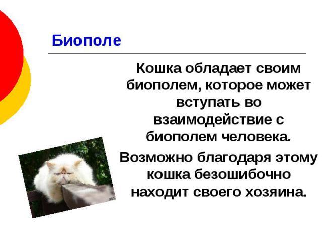 Биополе Кошка обладает своим биополем, которое может вступать во взаимодействие с биополем человека. Возможно благодаря этому кошка безошибочно находит своего хозяина.