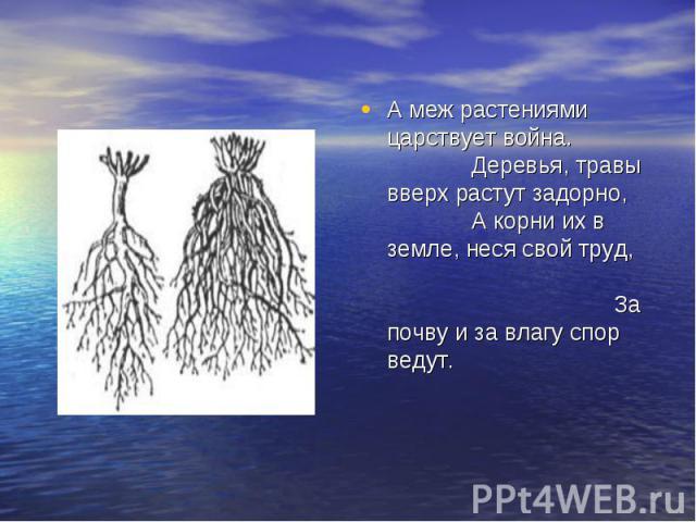 А меж растениями царствует война. Деревья, травы вверх растут задорно, А корни их в земле, неся свой труд, За почву и за влагу спор ведут.