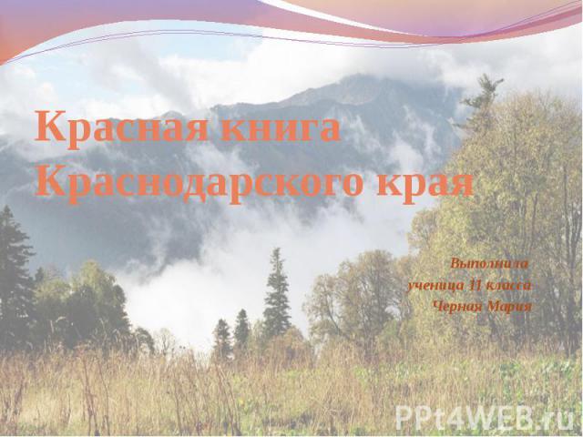 Красная книга Краснодарского края Выполнила ученица 11 класса Черная Мария