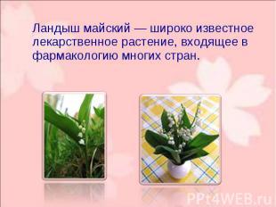 Ландыш майский— широко известное лекарственное растение, входящее в фармак