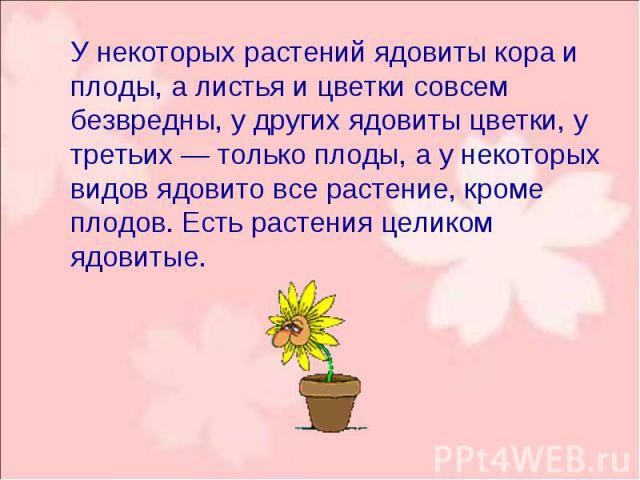 У некоторых растений ядовиты кора и плоды, а листья и цветки совсем безвредны, у других ядовиты цветки, у третьих — только плоды, а у некоторых видов ядовито все растение, кроме плодов. Есть растения целиком ядовитые. У некоторых растений ядовиты ко…