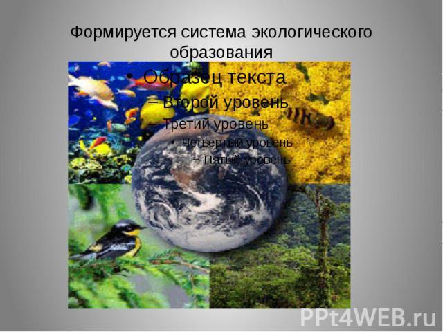 Формируется система экологического образования