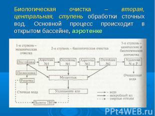 Биологическая очистка – вторая, центральная, ступень обработки сточных вод. Осно