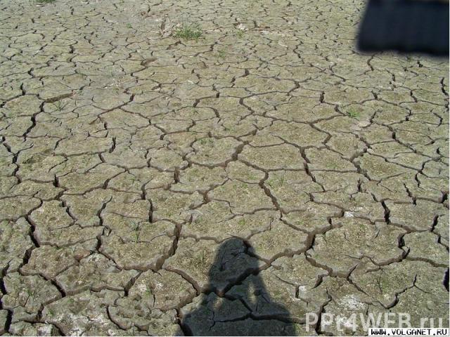- Загрязнение вод ; - Загрязнение вод ; - Уничтожение лесов ; - Загрязнение воздуха ; - Деградация земель ;