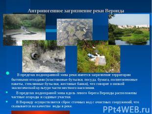 В пределах водоохранной зоны реки имеется загрязнение территории бытовыми отхода