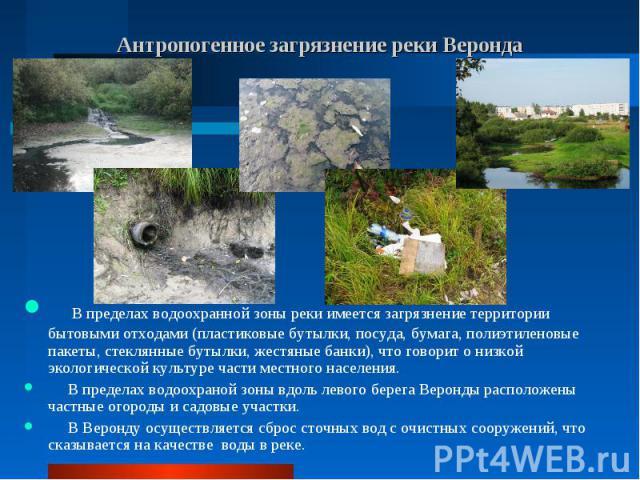 В пределах водоохранной зоны реки имеется загрязнение территории бытовыми отходами (пластиковые бутылки, посуда, бумага, полиэтиленовые пакеты, стеклянные бутылки, жестяные банки), что говорит о низкой экологической культуре части местного населения…