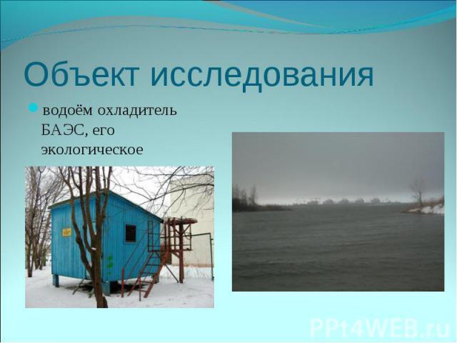 водоём охладитель БАЭС, его экологическое состояние. водоём охладитель БАЭС, его экологическое состояние.