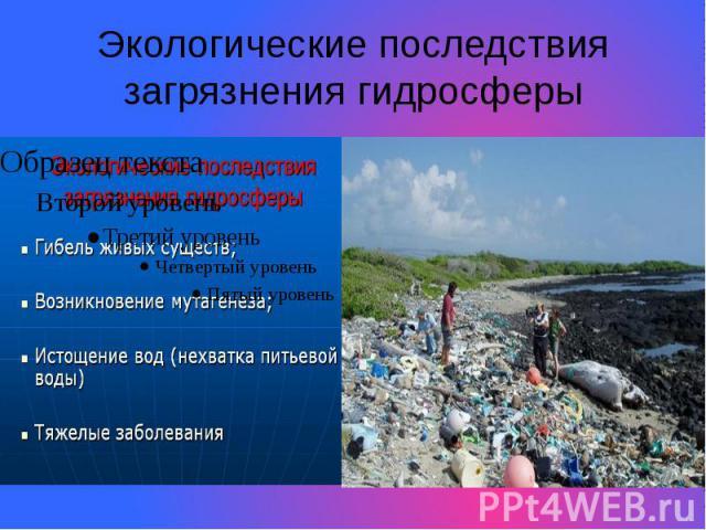 Экологические последствия загрязнения гидросферы