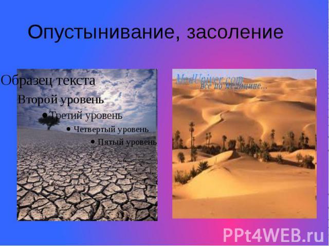 Опустынивание, засоление
