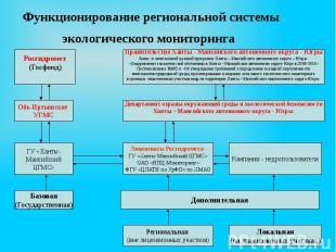 Функционирование региональной системы экологического мониторинга