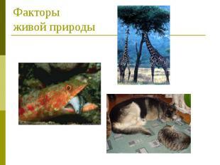 Факторы живой природы