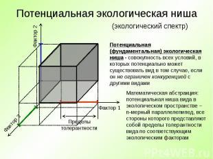 Потенциальная экологическая ниша