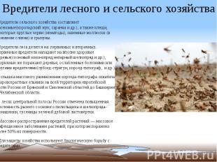 Вредители лесного и сельского хозяйства *Вредители сельского хозяйства составляю