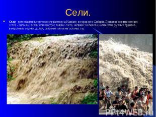 Сели. Сели - грязекаменные потоки случаются на Кавказе, в горах юга Сибири. Прич
